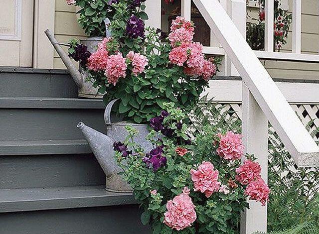 Trang trí bậc tam cấp bằng những chậu hoa cực xinh